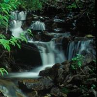 TRC Waterfall Stream by Bruce Fleming